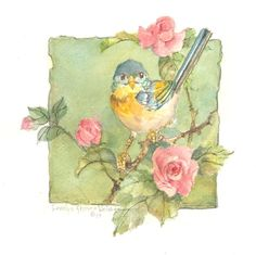 """This item is a signed, original watercolor by Carolyn Shores Wright and is part of the """"Window on the World"""" series. Watercolor Bird, Watercolor Paintings, Ouvrages D'art, China Painting, Bird Illustration, Vintage Birds, Little Birds, Bird Prints, Bird Art"""