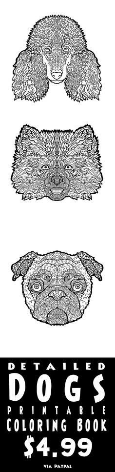 Dog Lover Coloring 25 Breeds Of Detailed Illustrations To Print Out And Color Dogs