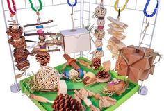Billedresultat for guinea pig toys