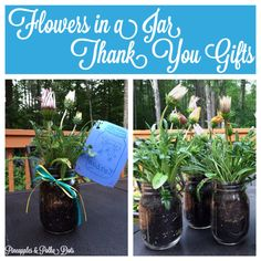 Pineapples & Polka Dots : Planting Annuals in Mason Jars: Thank You Gifts for Our Coworkers