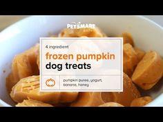PetSmart - YouTube