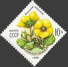 http://www.filatelissimo.com/wp-content/uploads/2006/09/1981_flora_10k.jpg