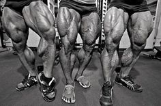 Ben Pakulski IFBB Pro Here is the exact leg workout routine that I've followed each year since 2007 when looking for MASSIVE HYPERTROPHY =>http://tinyurl.com/pactqzz #EducateAndDominate #GrowTime #MI40Nation