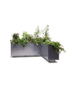 BEDD_Vinkel_120x160x50- Plants, Design, Fantasy, Patio, Plant, Planets