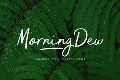 MorningDew Fonts In a beautiful morning, when silence creates imagination, and dew comes in droves to greet the world by Locomotype Handwritten Script Font, Script Type, Script Lettering, Cursive, Calligraphy, Business Brochure, Business Card Logo, Morning Dew, Illustrator Cs