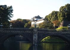 Where to view cherry blossoms, enjoy a summer picnic, admire the fall leaves or stroll through the winter greenery. The 20 top picks of Tokyo Japanese gardens, whenever you visit! Tokyo Travel Guide, Japan Travel, Japan Trip, Tokyo Imperial Palace, Tropical Greenhouses, Shinjuku Gyoen, Temple Gardens, Traditional Japanese House, Cherry Blossom Season