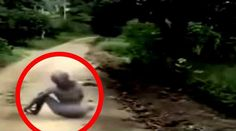 This video shows footage of 20 bizarre encounters of aliens and other paranormal creatures that are said to exist. The video looks at legendary ...