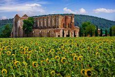 San Galgano Abbey, Tuscany, Italy