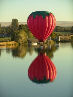 when I go up, this is DEFINITELY the balloon I want to go up in!!!  :D