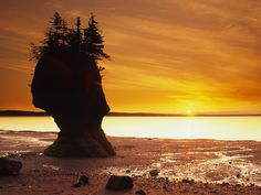 (© Barrett & MacKay/All Canada Photos/Getty Images); Hopewell Rocks on Bay of Fundy, New Brunswick, Canada Hopewell Rocks, New Seven Wonders, New Brunswick Canada, Beach Landscape, Natural Wonders, Beautiful Places, Beautiful Sunset, National Parks, Scenery