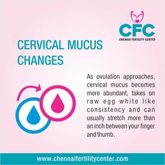 #Signs_of_Ovulation #Cervical_Mucus_Changes #cfc #chennai #fertility #tips #ovulation #infertility #ivf #treatment #hospital #medical