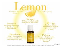 Lemon Essential Oil is our essential oil of the month for June. It is also one of the FREE essential oils this month from Young Living ( with qualifying purchase of or more) Lemon (Citrus lim… Young Living Lemon, Young Living Oils, Young Living Essential Oils, Essential Oils 101, Citrus Essential Oil, Essential Oil Blends, Lemon Uses, Lemon Oil, Living Essentials