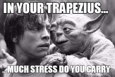 Massage appointments today we have. Mmmm yes. I sense much stress in you. A Jedi needs not these things. Open today at 130pm we do. Leave voicemail you will