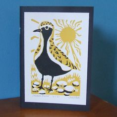 Golden Plover Sketch Book £6.50