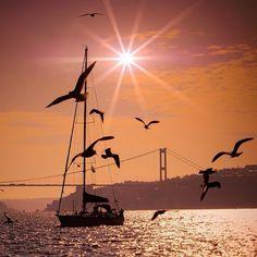 İyi ki bizim oldun İstanbul  by aslishot