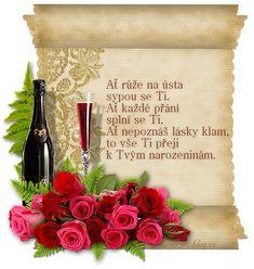 Nech ruže na ústa sypú sa Ti, nech každé prianie splní sa Ti. Nech nepoznáš lásky klam, to Ti prajem k Tvojím narodeninám