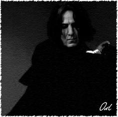 Life with Severus Harry Potter Severus Snape, Alan Rickman Severus Snape, Harry Potter Cast, Harry Potter Portraits, Snape And Lily, Always Harry Potter, Half Blood, Slytherin, Star Trek