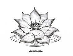 Image result for lotus flower tattoo