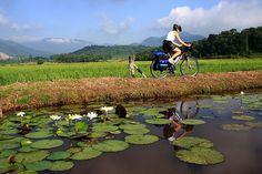 Com nome tão breve quanto sonoro, Timbó, em Santa Catarina, primeira cidade brasileira a criar uma cicloviagem pela região, conduz a saborosos lugares embalados por música, gastronomia e …