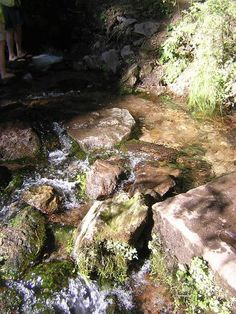 The Headwaters of the Sacramento River, Mount Shasta, CA
