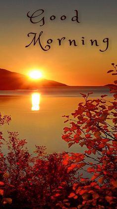 Happy Good Morning Quotes, Good Morning Greeting Cards, Good Morning Flowers, Morning Greetings Quotes, Good Morning Picture, Good Morning Messages, Good Morning Good Night, Morning Pictures, Morning Wish