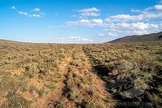 The Oregon Trail near Baker City. Yes, the ruts are still there, amazing.