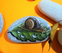 Hand Painted stone Snail on a leaf ! Is Painted with high quality Acrylic paints and finished with Glossy varnish protection. Painted Leaves, Hand Painted Rocks, Painted Stones, Stone Painting, Rock Painting, Acrylic Colors, Stone Art, Snail, Rock Art
