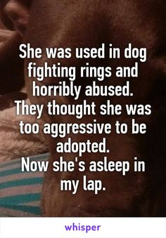 She was used in dog fighting rings and horribly abused. They thought she was too…