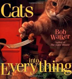 Cats Into Everything by Bob Walker,http://www.amazon.com/dp/0836269179/ref=cm_sw_r_pi_dp_KQCKsb05W93GD9QM