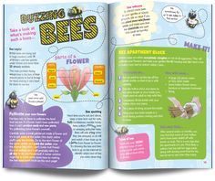 Bee layout kids science magazine UK