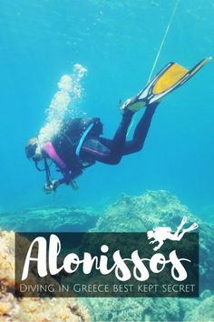 Scuba diving in Alonissos Greece - Diving in Greece best-kept secret: Alonissos, Northern Sporades - World Adventure Divers - Read more on Europe Travel Tips, Travel Guides, Travel Destinations, European Travel, Travelling Europe, Traveling, Marine Conservation, Best Kept Secret, Snorkelling