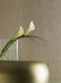 Gossamer Nd7061 Wallpaper Designs Designer Pattern Mater Bedroom Hgtv