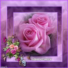 <3 pink and purple