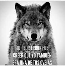 Find images and videos about quotes, motivation and wolves on We Heart It - the app to get lost in what you love. Wolf Quotes, Me Quotes, Motivational Quotes, Inspirational Quotes, Great Quotes, Quotes To Live By, Gurren Laggan, Wolf Spirit, Frases Tumblr