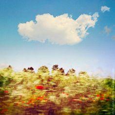 Land[E]scape new photo
