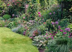 Garden plan to soften a fence with allium, lamb's ears, and geranium Patio Plants, Garden Shrubs, Lush Garden, Garden Beds, Moon Garden, Backyard Plan, Backyard Fences, Garden Fencing, Backyard Layout