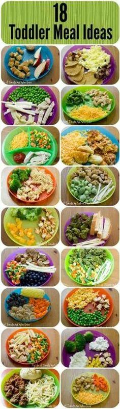 18 toddler meals