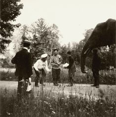 Tsar Nicholas II Swimming   ROMANOV FAMILY PETS: THE ELEPHANT - The Romanov Family