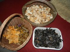 Went shroomin with Roo today. got a good haul of chanterelle, winter chanterelle, horn of plenty and hedgehog mushrooms. 17/09/2016