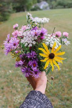 My Flower, Flower Power, Wild Flowers, Beautiful Flowers, Desert Flowers, Rose Flower Wallpaper, Hand Photography, Flower Landscape, Floral Bouquets