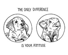 The only difference is your attitude.