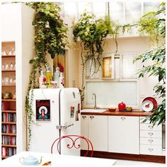 Kitchen Idea: An indoor garden brings life and character to any kitchen. Pot plants are another great option!