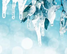 winter photography snow 8x10 8x12 fine art by mylittlepixels