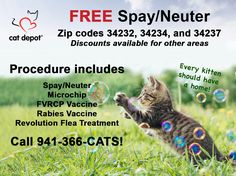 Cat Depot, Recipient of Florida Animal Friend Grant, Offers Free Spay/Neuter Services - Personal & Community Cats in Sarasota County • Personal cats: must live in zip codes 34232, 34234, 34237 and income qualify  • Community (feral) cats: no income qualifying; mandatory ear tip  • Includes: spay/neuter, microchip, FVRCP & Rabies vaccine, 1-month Revolution flea treatment Please call 941.366.CATS to make an appointment
