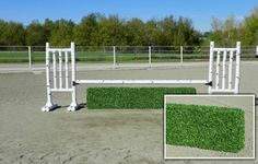 Brush Box, Liverpool Water Hazards, Horse Jumps by Premier Equestrian