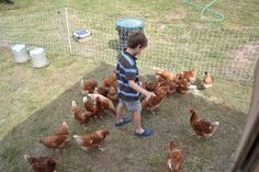 Fall Farm Day & Potluck 2013