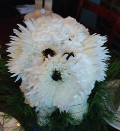 We helped throw a surprise party for a dog lover and decided to make these centerpieces to use in the restaurant. All it took was floral foam, flowers, greenery and a water dish. We used spider mum...