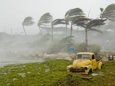hurricane photographs | ... in Key West, Florida is bombarded by wind and rain during a hurricane