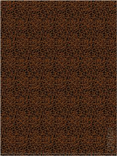 Scott Group Custom Carpets