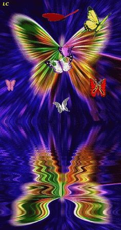 Pinimg Gifs о Butterfly Beautiful Butterfly Pictures, Beautiful Love Pictures, Beautiful Gif, Beautiful Butterflies, Flowers Gif, Butterfly Flowers, Butterfly Design, Butterfly Video, Butterfly Wallpaper